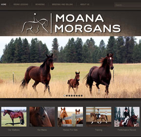 Moana Morgans website